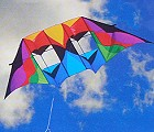Double Conyne Delta Kite